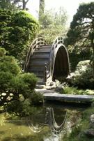 Japanese Garden,Japanese Te...