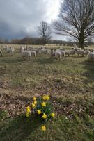 Warwickshire,Agriculture,Da...