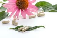 Nutritional Supplement,Herb...