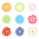 Floral Pattern,Flower,Peony...