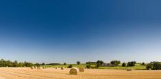 Farm,Field,Wheat,Hay,Agricu...