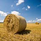 Bale,Haystack,Hay,Farm,Agri...
