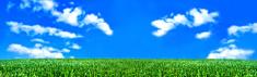 Panoramic,Lawn,Scenics,Farm...