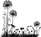 Plant,Dandelion,Silhouette,...