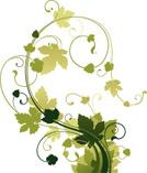 Vine,Leaf,Autumn,Swirl,Gree...
