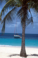 Sailboat,Beach,Caribbean,Gr...