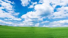 Sky,Field,Nature,Green Colo...