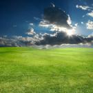 Sun,Solar Energy,Sky,Grass,...