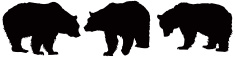 Bear,Silhouette,Brown Bear,...