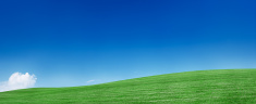 Nature,Environment,Sky,Gree...