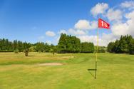 Golf,Golf Flag,Putting Gree...