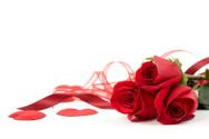 Rose - Flower,Red,Valentine...