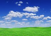 Sky,Grass,Blue,Green Color,...