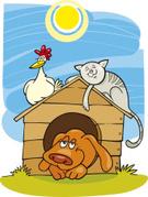 Domestic Cat,Kennel,Dog,Pet...