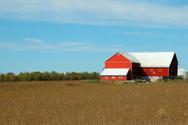 Barn,Farm,Silo,Soybean,Red,...