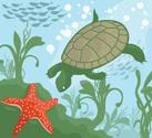Turtle,Seaweed,Underwater,O...