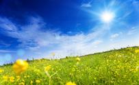 Sun,Sunlight,Landscape,Sky,...