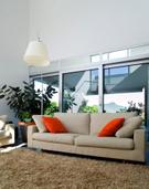 Sofa,Carpet - Decor,Domesti...