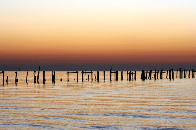 Pier Pilings Free Photo 1408386