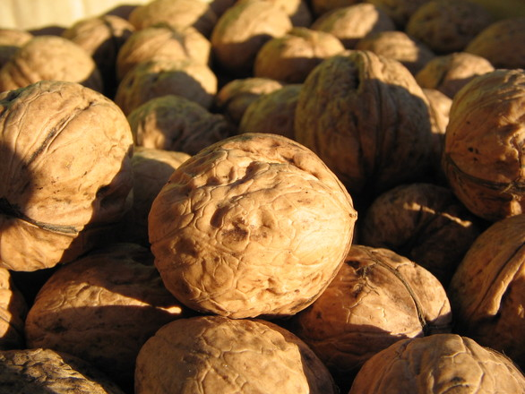 Nature S House Gourmet Nuts