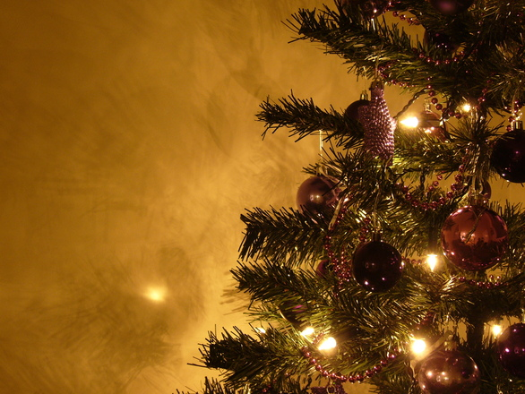 Graham's Christmas Tree 10