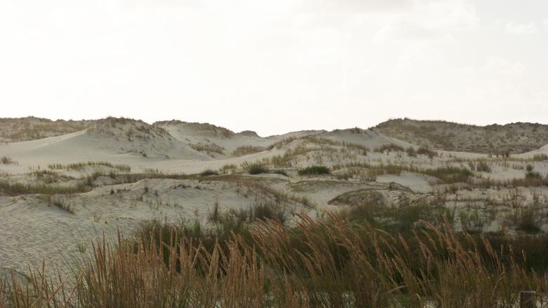 Dunes in France