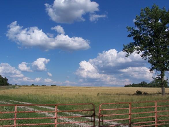 Free Kansas Scenery Stock Photo Freeimages Com