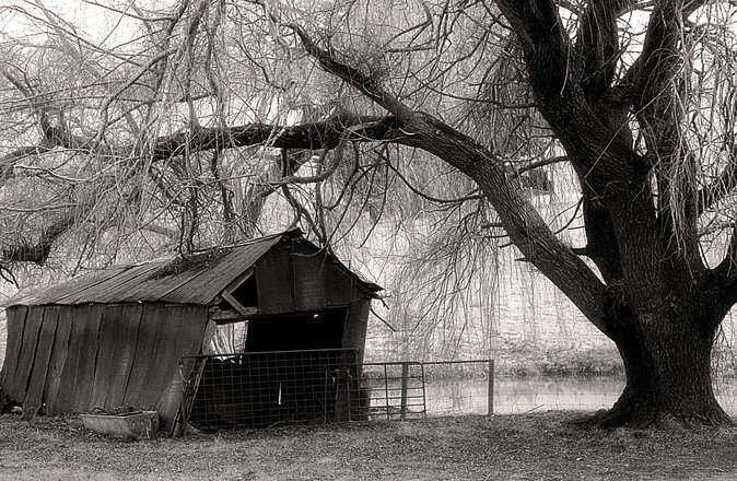 free leaning shed at lobethal 2 stock photo freeimages com