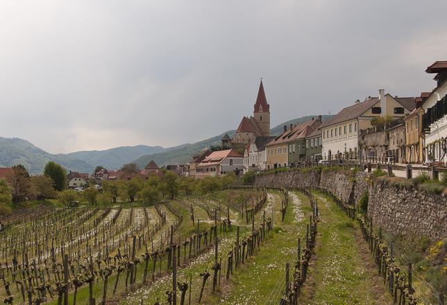 Danube valley 3