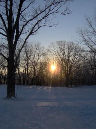 Winter's Light