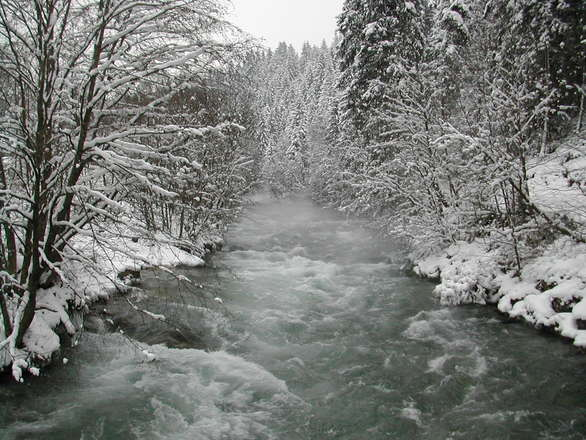 river surounded with snow and