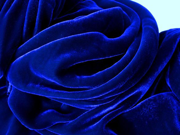 blue velvet free photo files 1199222 freeimagescom