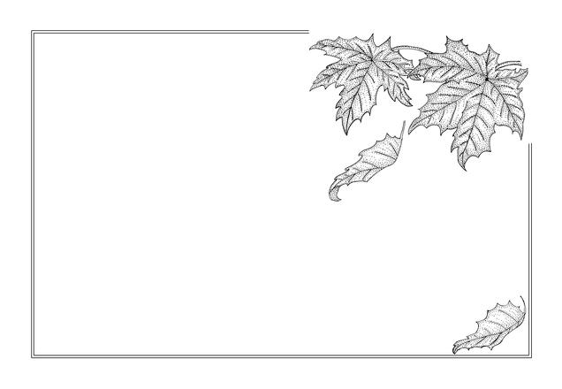 free autumn maple leaves frame stock photo