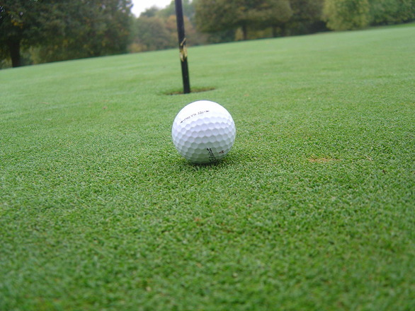 Ball close to the hole photo files 1511826 for Fish food golf balls