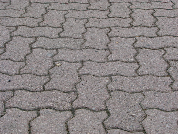 free brick path stock photo