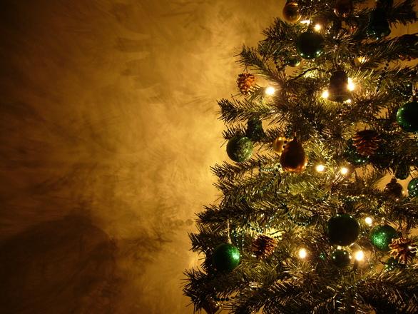 Graham's Christmas Tree 15