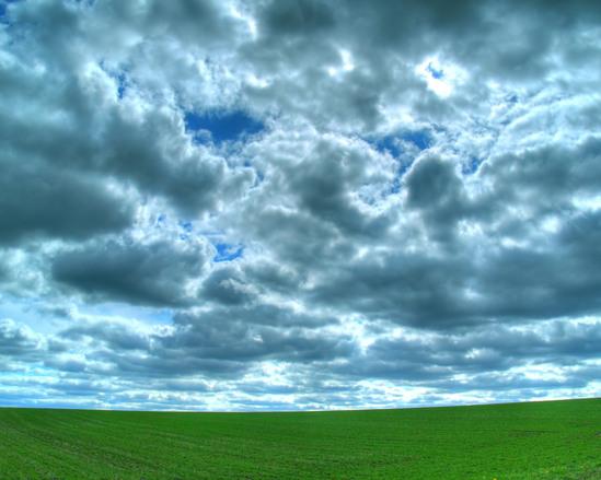 Free Lush Green Field Stock Photo
