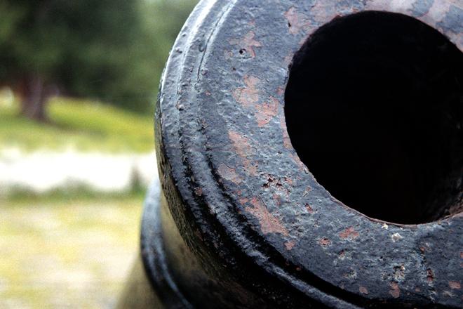 cannon, photo file, #1556672 - freeimages.com
