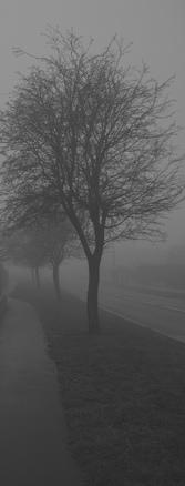 Misty Series 5