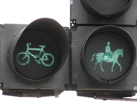 horse circulation sign