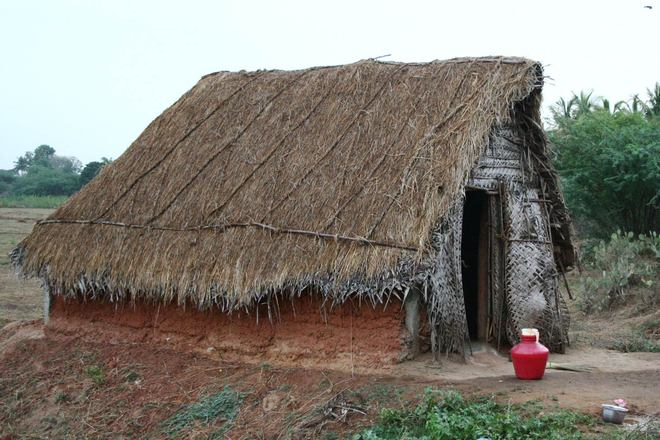 Free Old Hut In Village Chennai Vengal Stock Photo