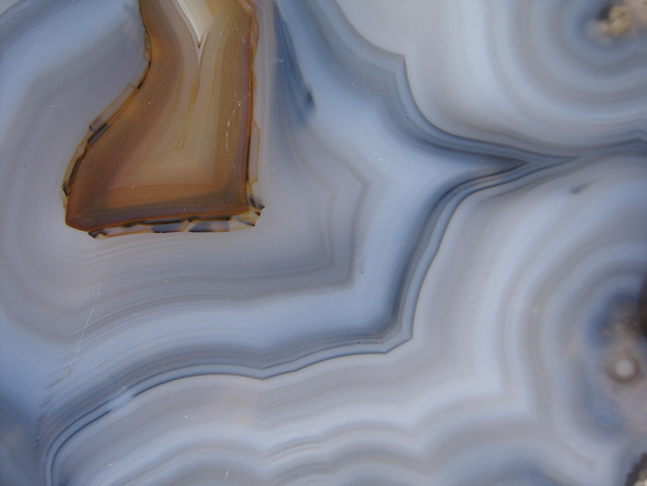 Natural texture 1