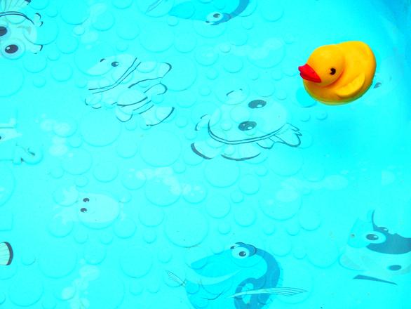 Duckie