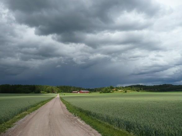 Dark skies I