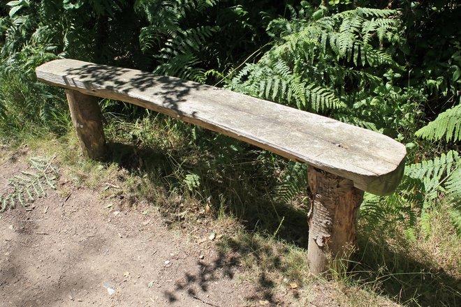 Tree Stump Bench Photos 1631890 Freeimages Com
