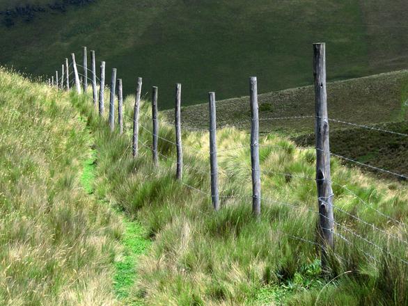 Fence line at Pichincha volcano