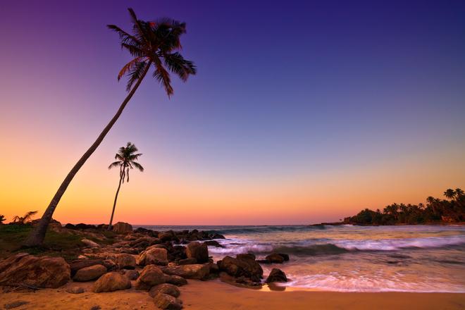 Sunset on Palm Beach