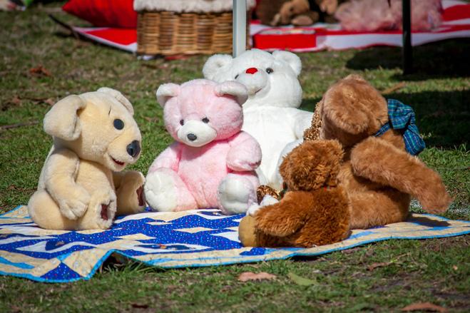 Free teddy bears picnic stock photo - Free teddy bear pics ...