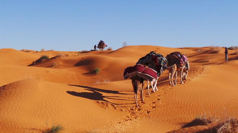 sahara beduins 3
