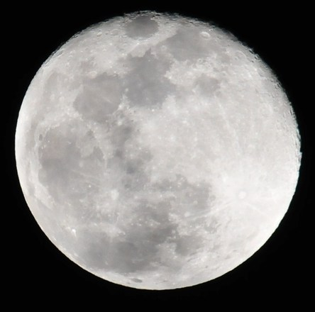Full Moon Tampa Florida